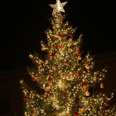 Bologna natalizia