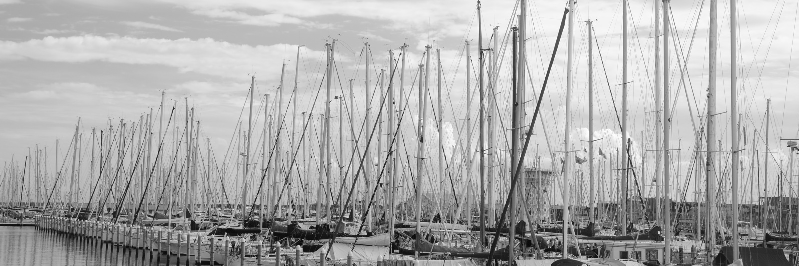 Marina di Ra - boats and seagulls