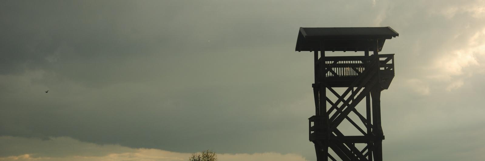 Valle delle Mandriole (RA)