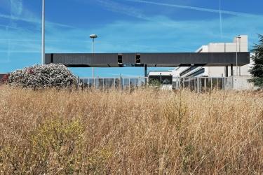 Ex Centro Direzionale di Alitalia